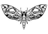 Black night butterfly in vector — Stock vektor