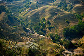 Rice filed terraces — Stock Photo