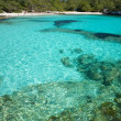 Clear sea at Turqueta beach -  
