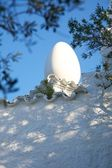 White egg on tile roof — Stock Photo
