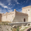 Castle of Arevalo - Stock Photo