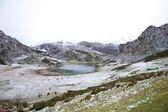 Ercina lago — Foto Stock