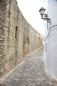 Great wall street at Vejer village — Stock Photo