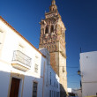 Jerez tower — Stock Photo