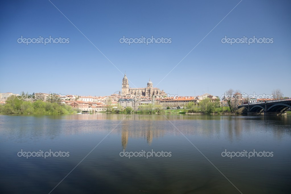 View of Salamanca city in Castilla Spain Europe — Stock Photo #6928526