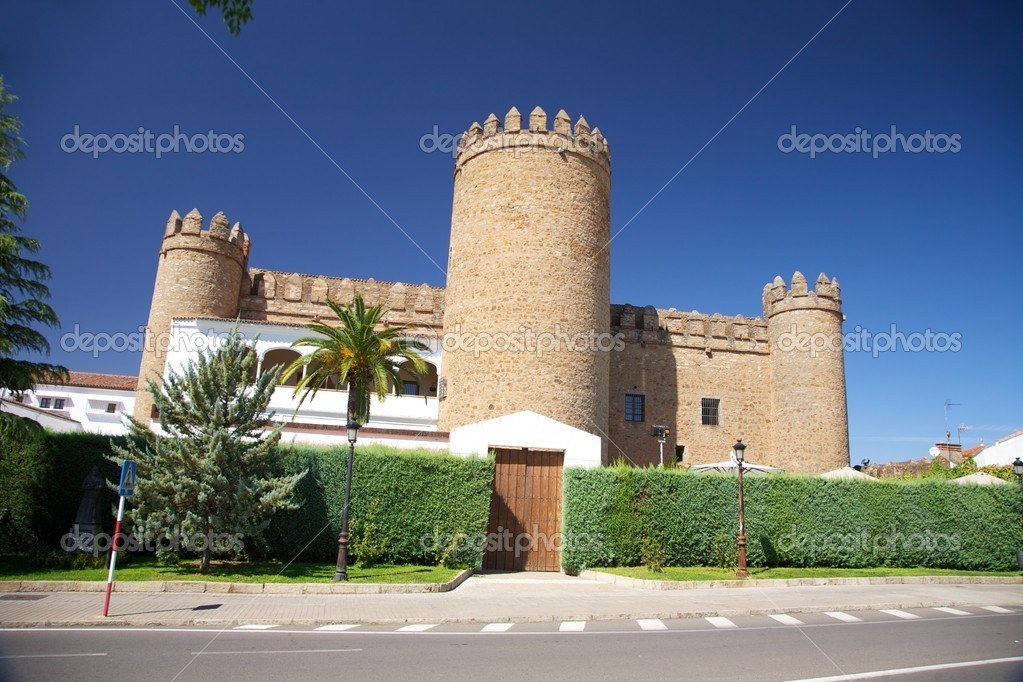 Zafra city at Badajoz Extremadura in Spain  Stock Photo #6955568