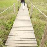 Woman on wood path — Stock Photo #6994331