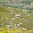 Stock Photo: Multiple s road at Gredos mountains