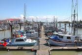 Marina & moored fishing boats in Richmond BC Canada. — Foto Stock