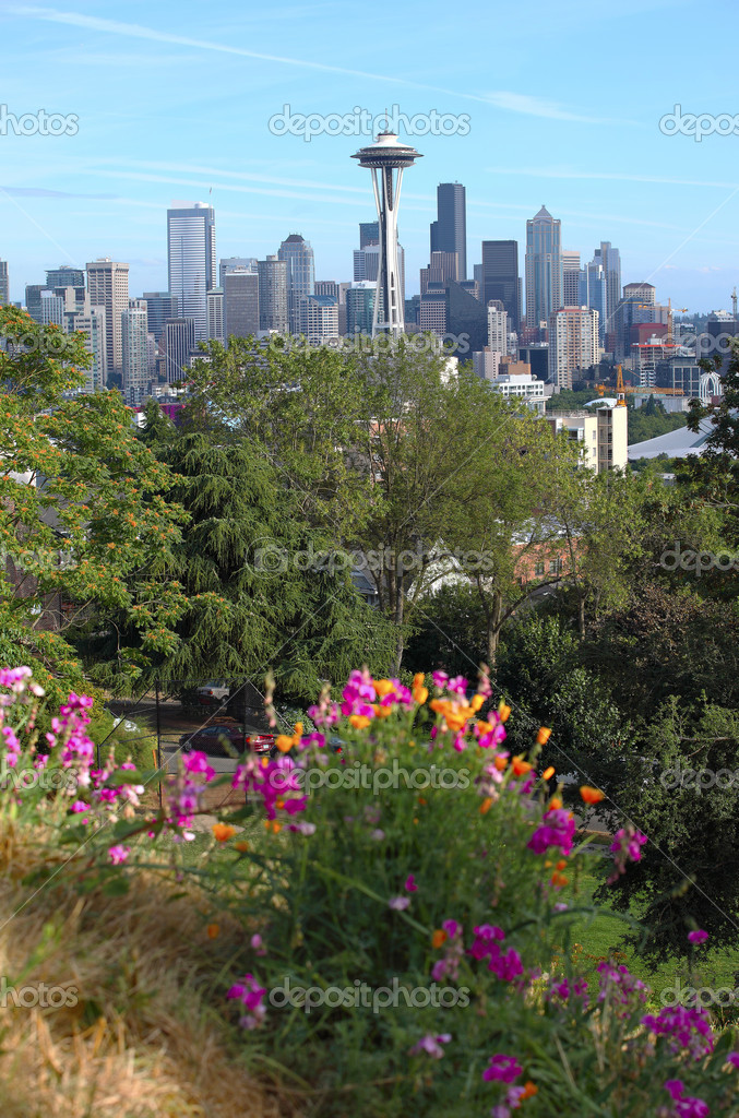 Seattle skyline and park in the foreground, WA state. — Stock Photo #6819495