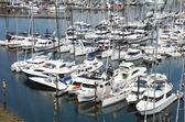 Яхты & парусные лодки на продажу в Гранвилл острове до н.э. — Стоковое фото