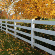 Stock Photo: White fences.