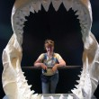 Stock Photo: Ancient jaws on exhibit, Newport OR.