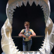Ancient jaws on exhibit, Newport OR. — Stock Photo #7592522