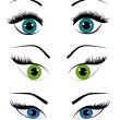 Woman eyes collection, vector illustration — Stock Vector