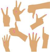 Women hands collection — Stock Vector