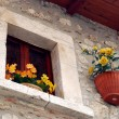 Window with flowers - Assergi - Abruzzo - Italy — Stock Photo