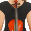 Woman with violin 058 - Photo