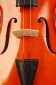 Violin 003 — Stock Photo