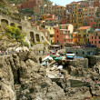 View of Manarol(Cinque Terre - Liguria) — Stock Photo #6825636