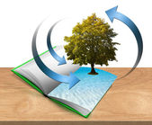 Book with tree and water — Stock Photo