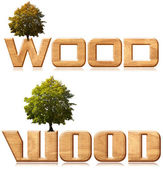 "Two words ""wood"" in wood carving with tree — Stock Photo"