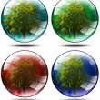 Set - trees in the globe - Stok fotoraf