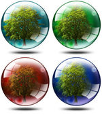 Set - trees in the globe — Stock Photo