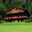 Mountain chalet - Italy Alps - Stock fotografie