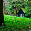 Little house in the nature — Stock Photo