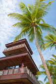 Coconut tree with watch tower — Stock Photo