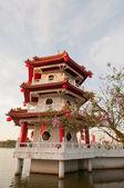 Singola pagoda cinese — Foto Stock