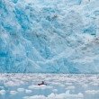 Kayaking at glacier — Stock Photo