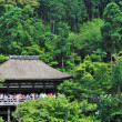Royalty-Free Stock Photo: Famous Kiyomizu Temple