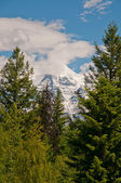 Misty Mount Robson — Stock Photo