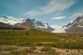 снежные горы и ледник — Стоковое фото