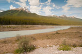 Landscape of tundra wetland — Stock Photo