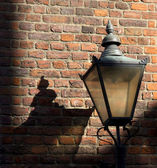Lamp Post Casting Shadow — Stock Photo