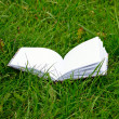 Open notebook on green grass — Stock Photo