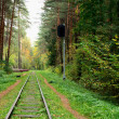 Railway track in the forest — Stock Photo