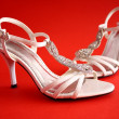 Bridal shoes — Stock Photo #7040511