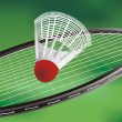 A tennis racket — Grafika wektorowa