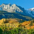 Mount Sneffel, Ridgeway, Colorado — Stock Photo