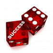 Dice-Success — Stock Photo