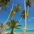 Samui beach — Photo