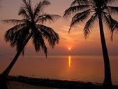 Samui beach — Fotografia Stock