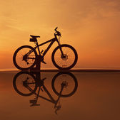 Reflction of bike silhouette — Stock Photo