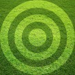 Target grass field — Stock Photo