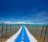 Bridge to the sea — Stock Photo