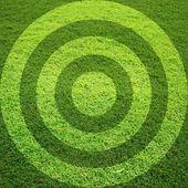 Target grass field — Stock Photo